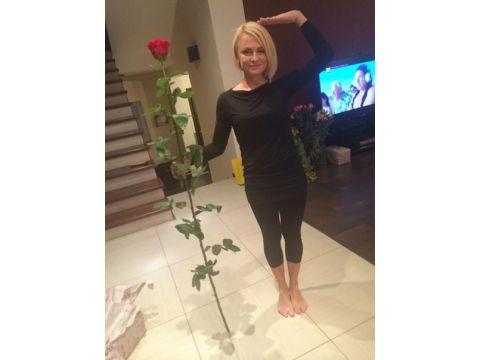 19 высоких роз