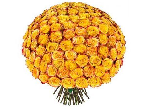 101 персиковая и желтая розы