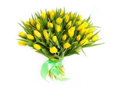 49 желтый тюльпанов