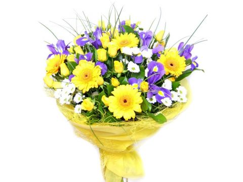 7 гербер, 5 хризантем, 5 кустовых роз, ирисы