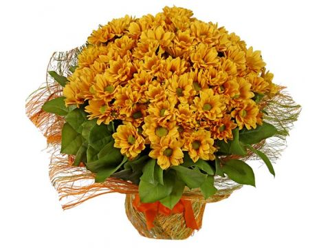 39 хризантем, зелень (салал)
