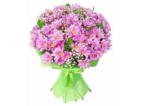 19 фиолетовых хризантем, гипсофилы