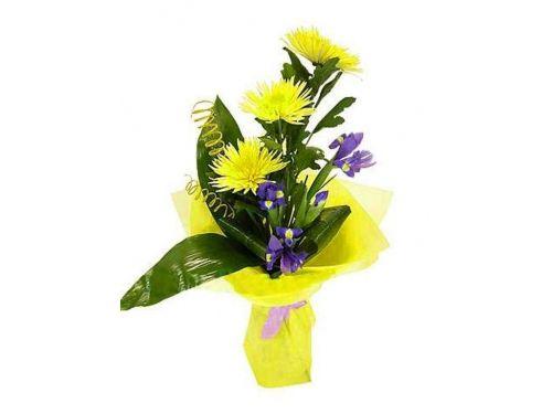 Букет 3 хризантемы, 6 ирисов