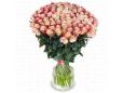"""Белые розы Эквадор 101 """"Люкс"""""""