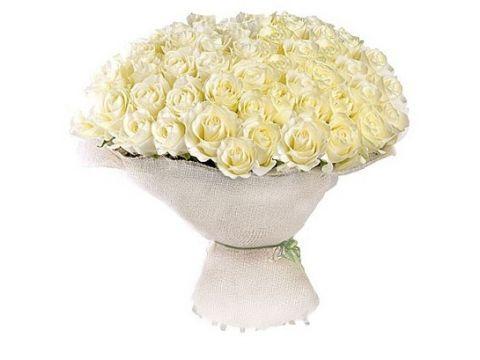 "Букет 101 роза ""Белый Снег"""