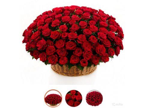 201 Роза в корзине (Все Цвета)
