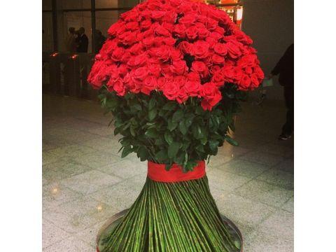 201 красная роза 1,7 метра