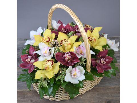 """Корзина из орхидей """"Ла Орхидея"""""""