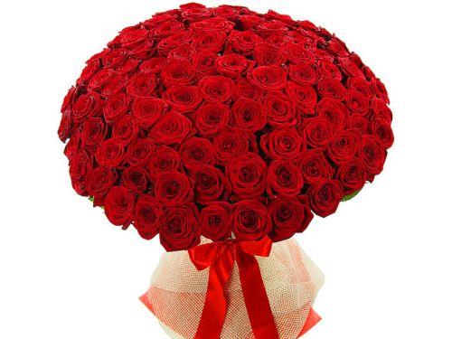 70 красных роз