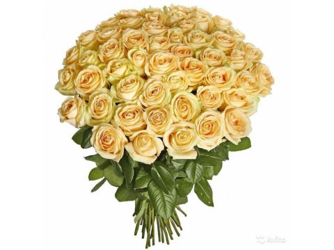 51 персиковая и желтая розы