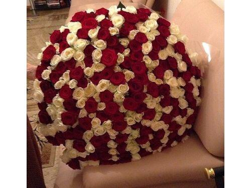 """301 роза """"Амели"""""""