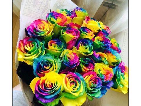 17 радужных роз