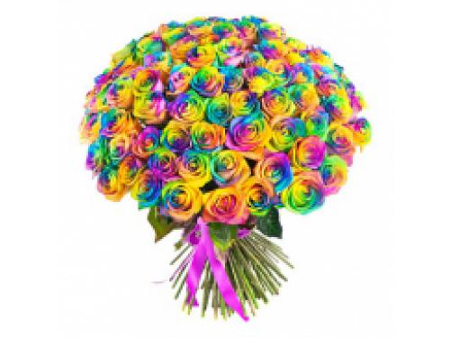 51 радужная роза 70см