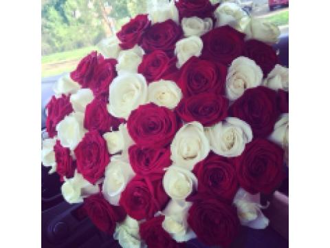 101 роза Микс (бел+красн)