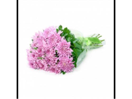 15 розовых хризантем