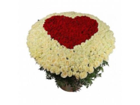 Сердце в корзине из 501 розы
